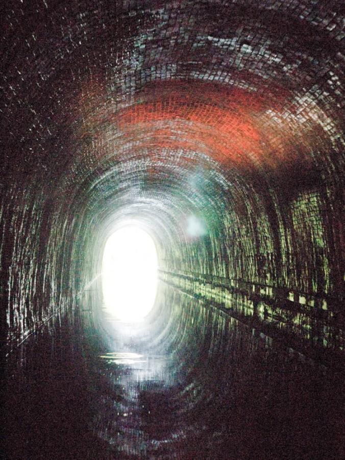 Shrewdly Tunnel