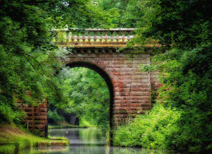 The famous 'Avenue Bridge' almost hidden by the greenery